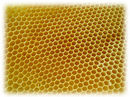 The Healing Benefits of Beeswax